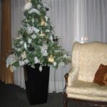 Kerstdecoratie woonhuis